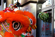 The Hague. 28/01/2006. Celebration of the Chinese New Year. The year of the dog. Photo: Gerrit de Heus.