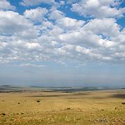 Scenic landscape of Masai Mara Game Reserve. Kenya. Africa.