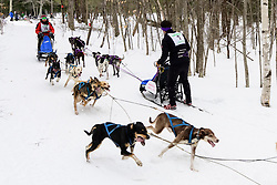 Race winner Rejean Therrien of St-Emile, QC left, passes competitor Eddie Clifford of Raymond, NH in a corner on the final day of the World Championship Sled Dog Derby on Sunday February 16, 2020.(Alan MacRae for the Laconia Daily Sun)