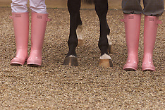 Channel four racing commentator's in Pink Boots