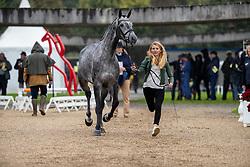 Minner Manon, BEL, Cool Dancer<br /> Mondial du Lion - Le Lion d'Angers 2019<br /> © Hippo Foto - Dirk Caremans<br />  16/10/2019