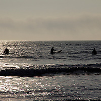 Europe, UK, Wales, Pembrokeshire. Freshwater West Beach.