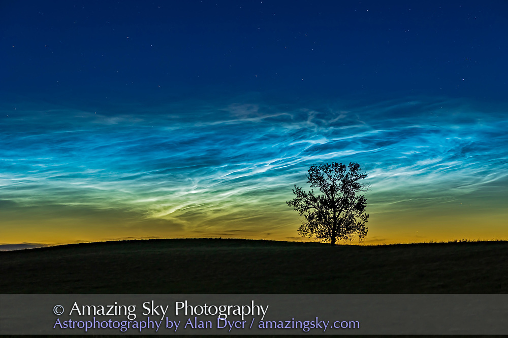 """A single image of the brightest section of the massive """"grand display"""" of noctilucent clouds at dusk on June 16, 2021 from """"One Tree Hill"""" (my name for it!) near home in southern Alberta. This display was bright and extensive at dusk on June 16, and re-appeared over much of the northeastern sky at dawn on June 17.  Note the colours — with the NLCs having a reddish tinge at the top where sunlight is reddened as the Sun sets from that altitude and location of the clouds. The lower areas of NLCs often appear green as well. But the main colour of NLCs is electric blue, very much so this night when they were so bright. <br /> <br /> This is a single image with the 85mm Samyang lens and Canon R6."""