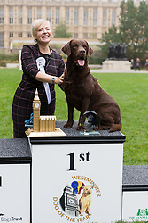 © Licensed to London News Pictures. 26/10/2017. LONDON, UK.  First prize winner, TRACEY BRABIN MP and her dog, Rocky at the Westminster Dog of the Year Competition held in Victoria Tower Gardens. The Westminster Dog of the Year Competition is organised jointly by the Kennel Club and the Dogs Trust..  Photo credit: Vickie Flores/LNP