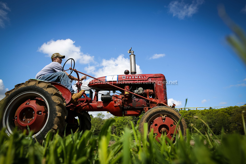 """(5/18/14, MEDWAY, MA) Justin McManus, 14, of Holliston pulls the weight sled with his 1940 Farmall Model """"A"""" during the Old Coots Tractor Pull at Shady Oaks Farm in Medway on Sunday. Daily News and Wicked Local Photo/Dan Holmes"""