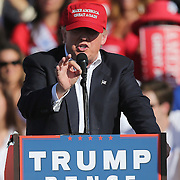 Republican presidential candidate Donald Trump campaigns at the Central Florida Fairgrounds in Orlando, Florida USA  02 Nov 2016