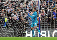 Football - 2016 / 2017 Premier League - Chelsea vs. Swansea City<br /> <br /> Lukasz Fabianski of Swansea grabs the net in despair after letting the ball go under his body for Pedro's 2nd goal for chelsea at Stamford Bridge.<br /> <br /> COLORSPORT/ANDREW COWIE