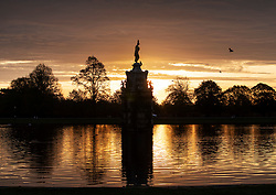 © Licensed to London News Pictures. 03/11/2018. London, UK. Birds rest on the Diana Fountain at sunrise in Bushy Park, south west London. The remains of hurricane Oscar are expected affect parts of the UK overnight bringing high winds and rain. Photo credit: Peter Macdiarmid/LNP