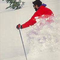 Allan Pietrasanta powder skis between trees at Mammoth Mountain, California.