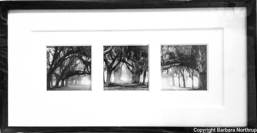 """Printed on archival rag paper.  Print size: 4x4"""" (3). Framed: 11x21.<br /> $380.00 SOLD"""