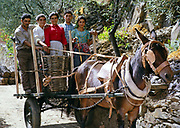A series of images about port wine production in Portugal c 1960 - family portrait standing on back of cart with horse
