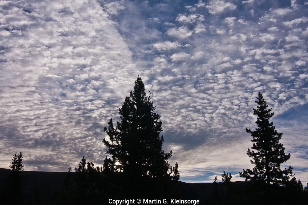 Altocumulus mackerel clouds over Shrine Pass, Colorado.