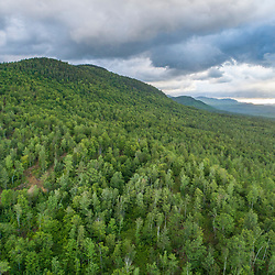 Morning clouds over a working forest in Bethel, Maine.