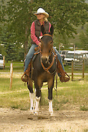 Cowgirl riding mule (Mulus mula) at Montana Mule Days, Drummond, Montana, <br /> MODEL RELEASED