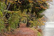 Hiking trail from St Wolfgang to St Gilgen via Falkenstein church, in autumn. Wolfgangsee, Salzkammergut, Austria © Rudolf Abraham
