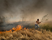 In a wheat field, a slash and burn fire gets out of hand in Madhya Pradesh. Agriculture fires are a huge factor for bad air pollution in India.