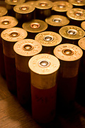 12 guage shotgun shells as used by the hunters during their annual duck and upland game bird hunting. These cartridges range in guage size and with shot of different metal types. Mainly, and in this case, lead shot.