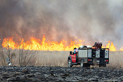 Firetrucks and firefighters managing a controlled burn on the Daphne Prairie, a remnant of the Blackland Prairie, Mount Vernon, Texas, USA.