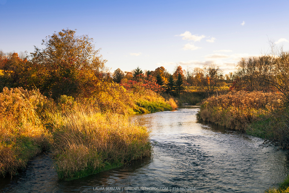 Salt Creek in the late afternoon golden hour sun in early autumn.