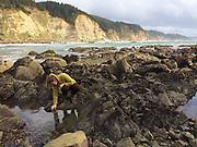 Tide pools, Cape Arago, South, Oregon Coast