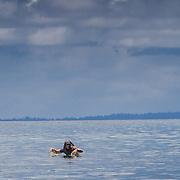 4 Bobs / Rifles at Kandui, Kandui, Mentawais Islands, Indonesia March  27, 2013.