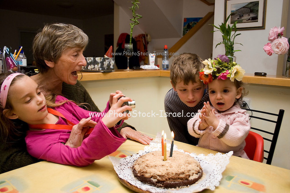 A young toddler of two celebrating her birthday with brother, sister and grandmother Model releases available