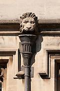 Lion Gargoyles above a drain below Magdalen Great Tower, part of Magdalen College, Oxford University, England.