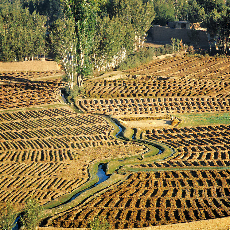 Ancient irrigation methods are still used today in the Bamian Valley of northern Afghanistan.