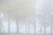 On the first morning of the government's second national Coronavirus lockdown, a cyclist pedals between as trees in morning fog which obscures the landscape in Ruskin Park, a south London green space, on 5th November 2020, in London, England.