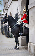 A solider and horse stand at the entrance to Horse guard parade on Whitehall on the 25th of May 2021 in Westminster, London, United Kingdom. Horse guards parade is the site of many annual ceremonies including trooping of the colour, tourist are slowly getting back to visiting tourist sites in central London after the COVID-19 lockdown.