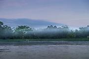 Landscape with a rainforest in a fog on the bank of the San Juan River, El Castillo, Rio San Juan Department, Nicaragua