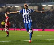 Brighton and Hove Albion v Cardiff City 300914