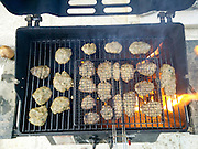 Kebab cutlets on a BBQ