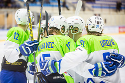 Slovenian players celebrate during Hockey match between Slovenia and Ukraine in IIHF U20 World Cup Division I, Group B, on December 9, 2017 in Dvorana Bled, Bled, Slovenia. Photo by Ziga Zupan / Sportida