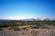 scenic view of open range