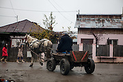 A horse carriage transporting wood at the main road in Marginenii de Jos