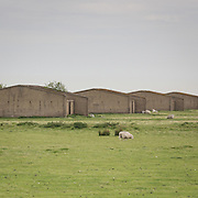 Cliffe explosives works IV, Hoo Peninsula. WWI concrete structures for drying cordite. Curtis's and Harvey Explosive Works.