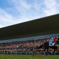 Wonder horse Overdose wins the Hungary Grand Prix in Kincsem Park.