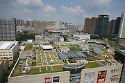 HEFEI, CHINA - AUGUST 24: (CHINA OUT) <br /> <br /> Farm Built On Hefei's Shopping Mall Rooftop<br /> <br /> A farm on a shopping mall rooftop is seen at Luyang District on August 24, 2015 in Hefei, Anhui Province of China. 7,800 square meters have developed to plant 23 kinds of vegetables on 17,000-suqare-meter rooftop of a four-story shopping mall in south China's Hefei City. There's still a playground for children beside the farm. According to a person in charge of the farm, the farm has taken 6 layers of waterproof and sandproof based on the original waterproof device but people should be charged when experiencing and purchasing on the farm.<br /> ©Exclusivepix Media