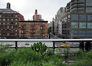 © licensed to London News Pictures. New York, USA  30/05/11. New York's newest public space, the High Line, is about to double in size. The former railway which has been converted into a public park is due to open a new section in June. Once the extension opens the High Line will  will run from the stylish Meatpacking district through fashionable Chelsea all the way up to 30th Street Photo credit should read Stephen Simpson/LNP
