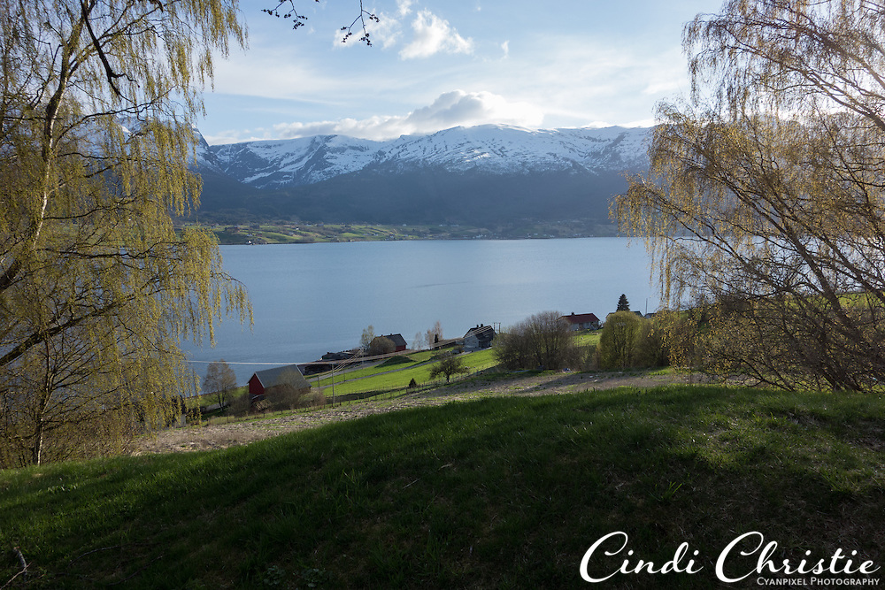 A large burial mound, Tinghaugen på Hauge (or Karnilshaugen) is part of the Nordfjord Folk Museum, visited on May 13, 2013. Flower grow on the Iron Age mound, which has not been excavated.  (© 2013 Cindi Christie)