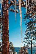 Spring in Lake Tahoe California