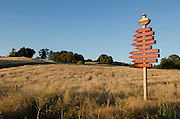 Vineyards sign in the Shenandoah Valley near Plymouth, Amador County, California