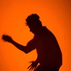 A dancer is silhouetted behind a colored curtain Saturday night, Sept. 1, 2007 during the annual Burning Man Festival on the Black Rock Desert near Gerlach, Nev. ..Photo by David Calvert/Nevada Sagebrush