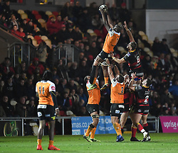 Cheetahs' Teboho Mohoje taking the ball in the line out<br /> <br /> Photographer Mike Jones/Replay Images<br /> <br /> Guinness PRO14 Round Round 18 - Dragons v Cheetahs - Friday 23rd March 2018 - Rodney Parade - Newport<br /> <br /> World Copyright © Replay Images . All rights reserved. info@replayimages.co.uk - http://replayimages.co.uk