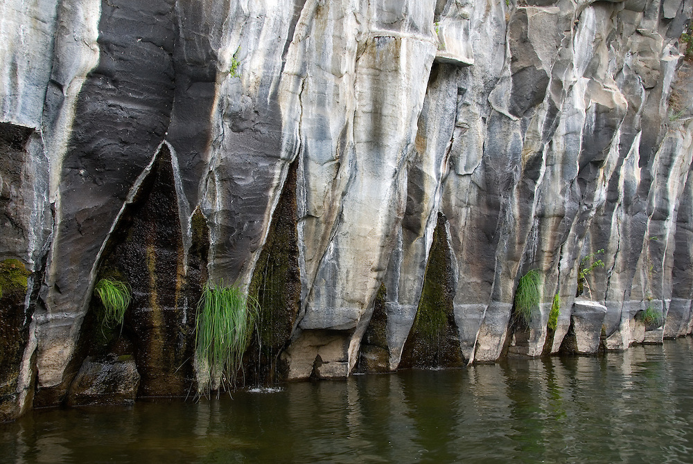 Springs pouring out of a basalt wall, Crooked River Gorge, Oregon.