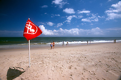 A pennant marking the limit of ocean access waves on the beach at the Henlopen Acres Beach Club, Friday, Aug. 16, 2019, in Rehoboth Beach, Del. (Photo by D. Ross Cameron)