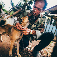 Thailand | Dog Meat Trade