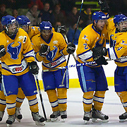 Southern Stampede players celebrate after scoring during the Southern Stampede V West Auckland Admirals New Zealand Ice Hockey League match at the Queenstown Ice Arena, Queenstown, South Island, New Zealand, 4th June 2011