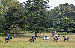 Licensed to London News Pictures. 08/10/2021. London, UK. Horse riders enjoy the mild temperatures of 15c, (8c warmer than usual) this morning in Richmond Park, south-west London as weather experts reveal that today could be the UK's warmest October morning on record. Temperatures are also predicted to rise this afternoon with highs of 21c expected. Photo credit: Alex Lentati/LNP